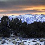Yednock Conservation Easement, Mono Basin